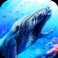 蓝鲸海洋生物模拟3D游戏最新官方版 v1.0.0